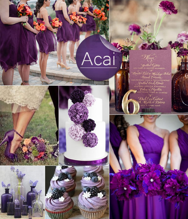 Dark-Purple-Acai-2013-Fall-Wedding-Color-Inspiration